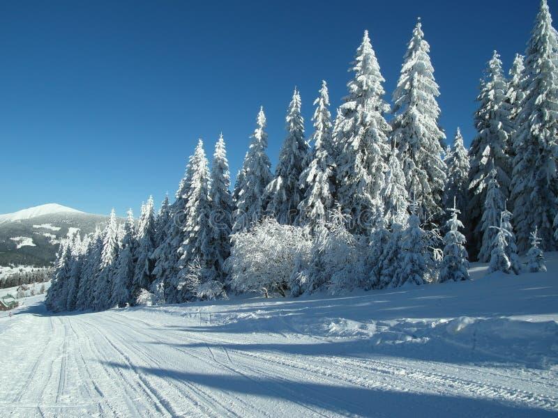 Un jour ensoleillé dans les montagnes image libre de droits