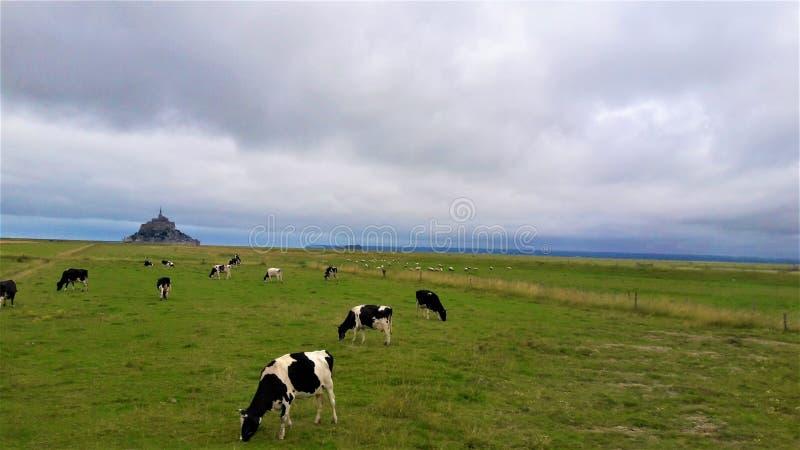 Un jour nuageux en Normandie photo libre de droits