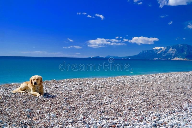 Un jour ordinaire pour Antalya image stock