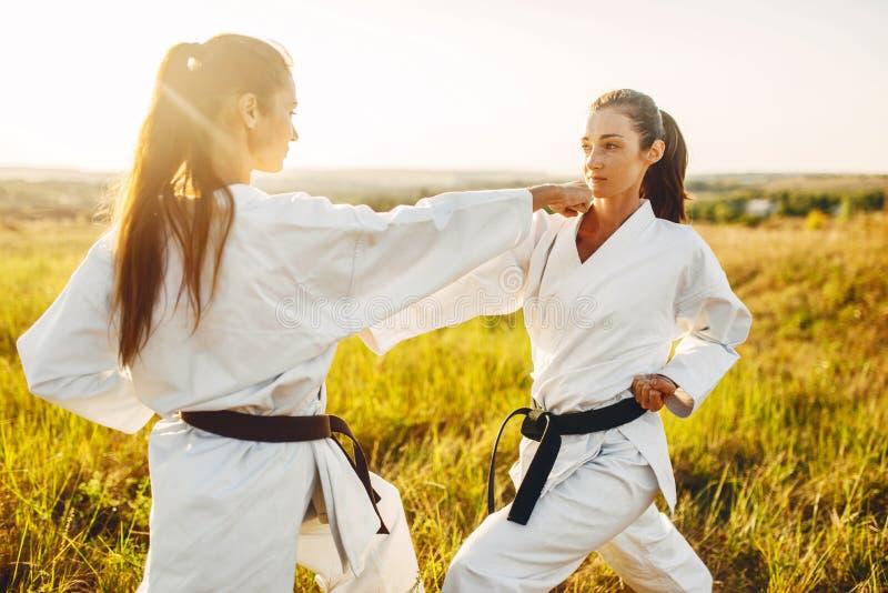 Un karatè di due femmine con la lotta delle cinture nere nel campo immagine stock libera da diritti
