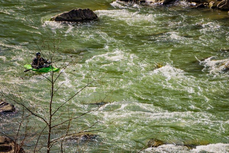 Un Kayaker su Murray River immagine stock libera da diritti
