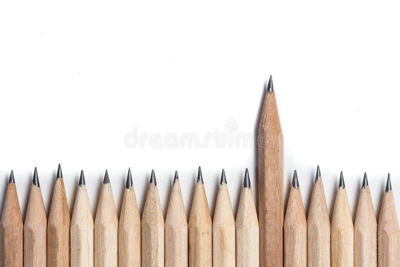 Un lápiz de madera que se coloca hacia fuera de la fila imagen de archivo libre de regalías
