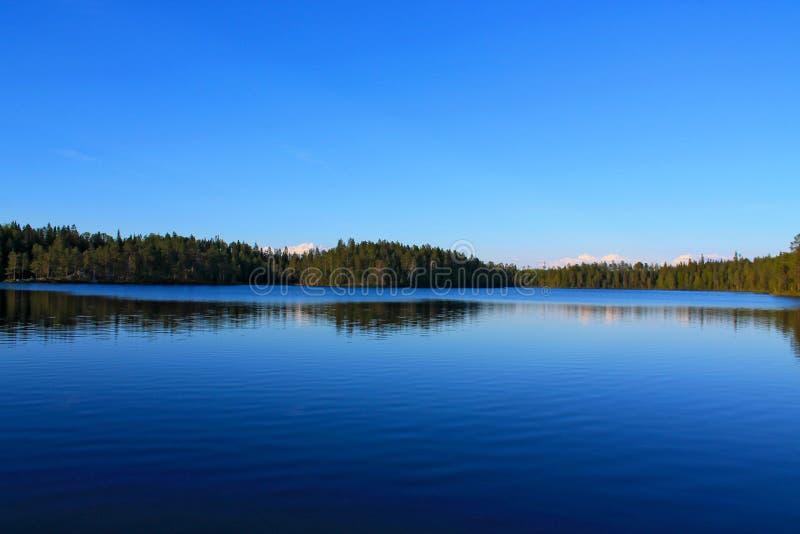 Un lac dans un forrest photos libres de droits