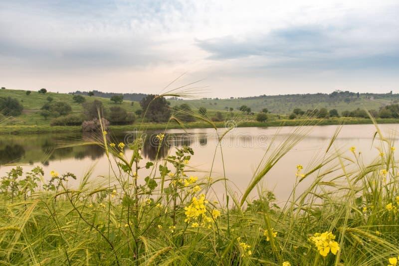 Un lac et un r?servoir de l'eau envelopp?s en vert image stock