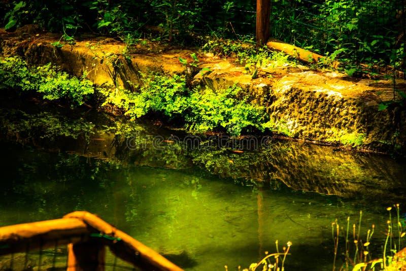 Un lac fantastique image libre de droits
