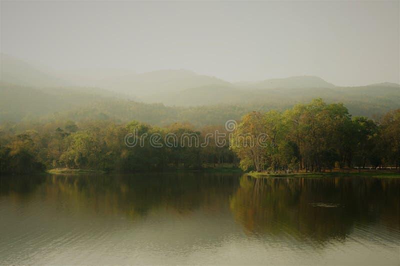 Un lac, une forêt et des montagnes à l'arrière-plan, brumeux photo stock