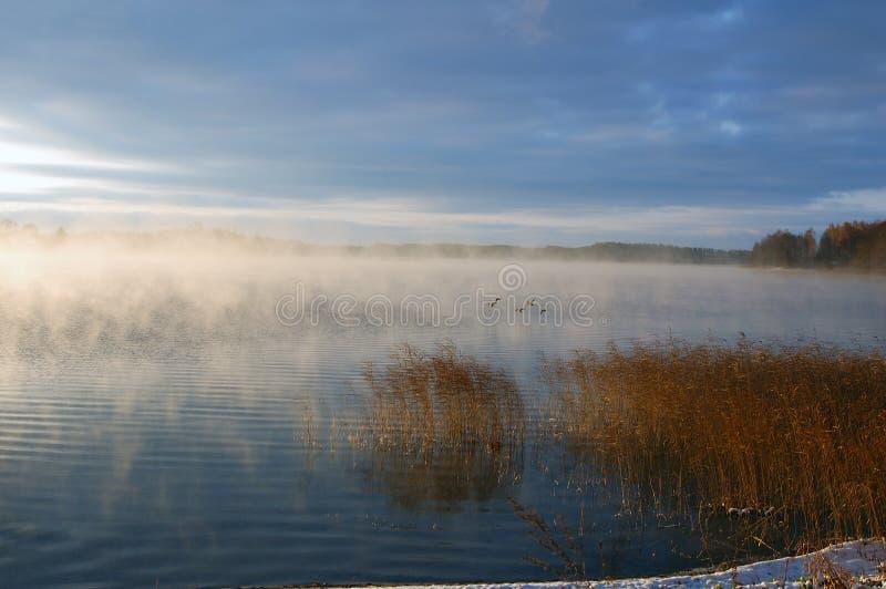 Un lago è in nebbia fotografie stock
