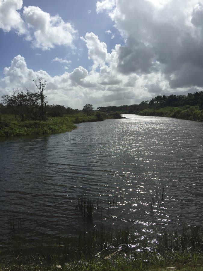 Un lago de la mañana imagen de archivo libre de regalías