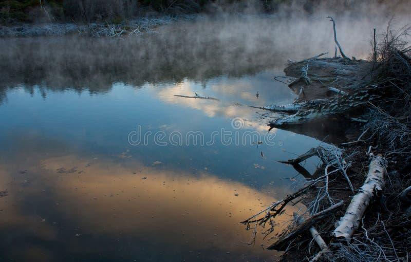 Un lago geotermico nel parco di Kuirau nel Distretto di Rotorua in Nuova Zelanda immagini stock