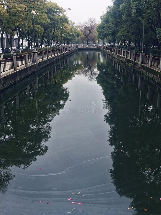 Un lago inquinante immagini stock libere da diritti
