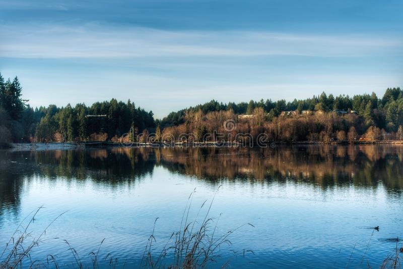 Un lago in Olympia Washington immagine stock