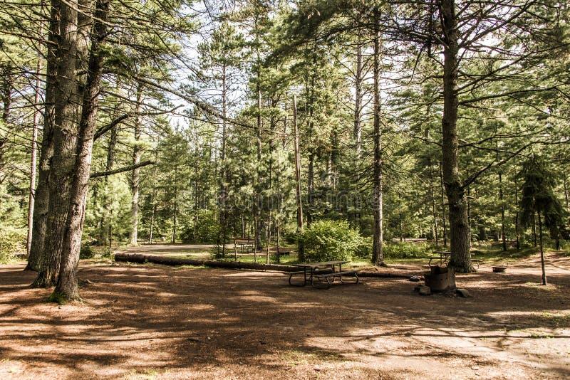 Un lago vuoto campground del campeggiatore della tenda paesaggio naturale Canada della foresta del parco nazionale del Algonquin  fotografie stock libere da diritti