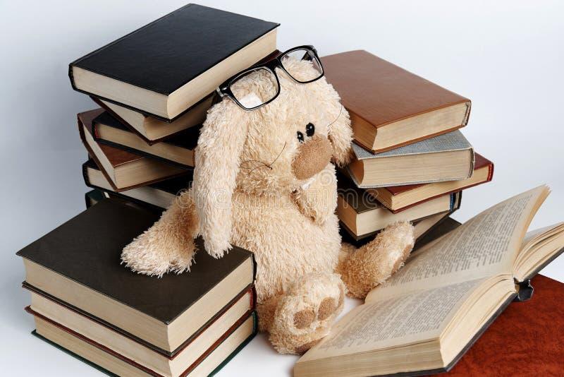 Un lapin mou de jouet en verres se repose dans les piles des livres image libre de droits