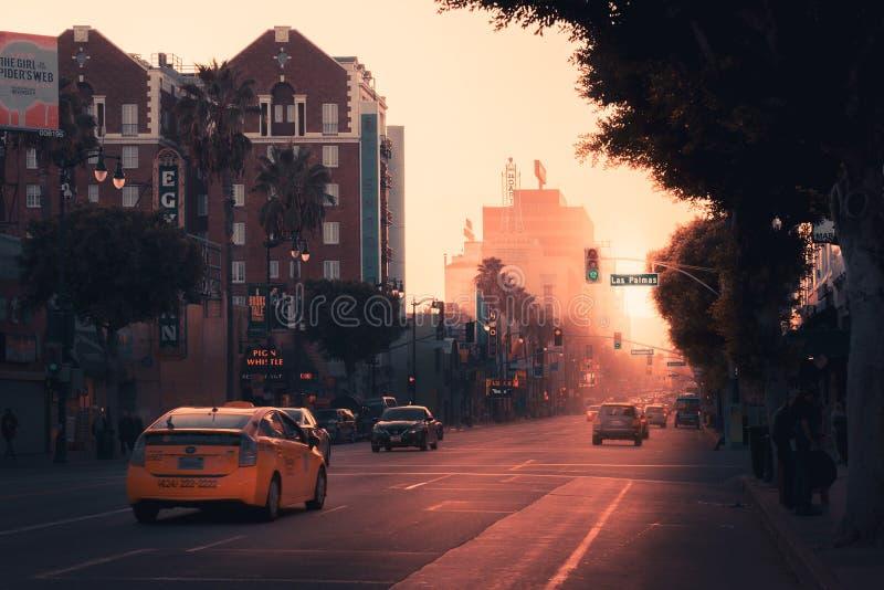 Un Las Palmas abbattuto stupefacente a Hollywood con la chiesa dello scientology nel colpo immagine stock libera da diritti