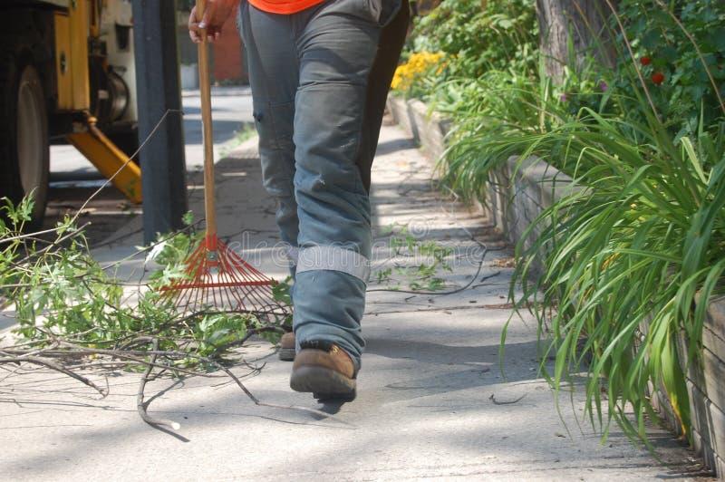 Un lavoratore che rastrella sui rami e sulle foglie tagliati su un marciapiede un giorno soleggiato fotografie stock libere da diritti