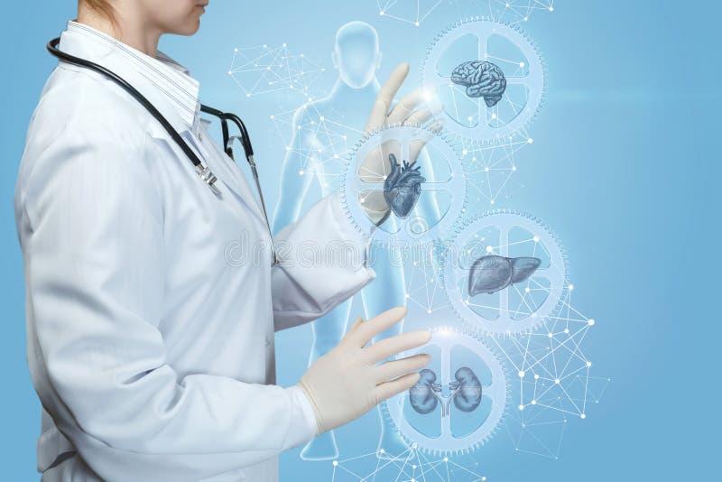 Un lavoratore medico regola un meccanismo complesso di salute fotografia stock