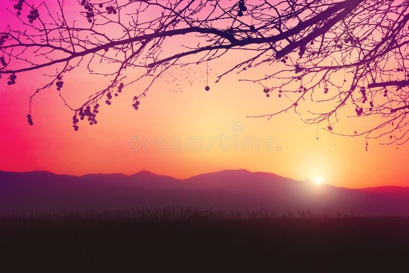 Un lever de soleil romantique et rêveur images libres de droits