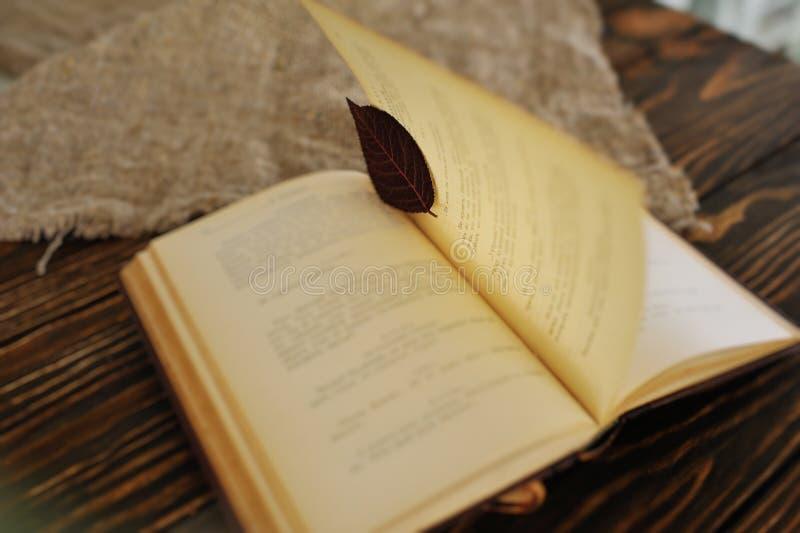 Un libro viejo con una hoja en vez de una señal en un fondo de madera imagenes de archivo