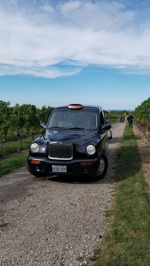 Un limo negro del taxi en el viñedo imagenes de archivo