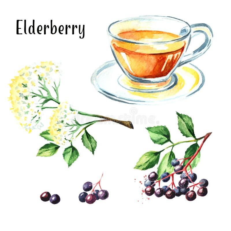 Un más viejo juego de té Ejemplo dibujado mano de la acuarela, aislado en el fondo blanco stock de ilustración