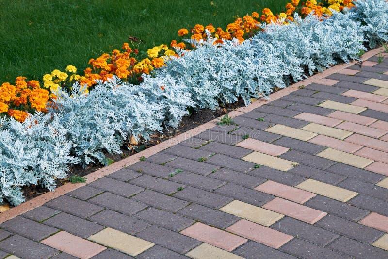 Un macizo de flores de flores anaranjadas está situado a lo largo de las trayectorias verdes del césped y del guijarro imagenes de archivo