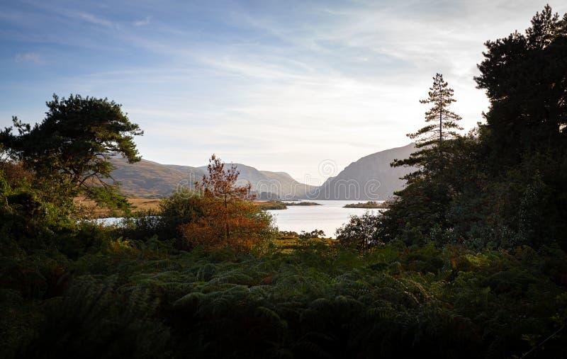 Un magnifique lac entouré d'une nature luxuriante images stock