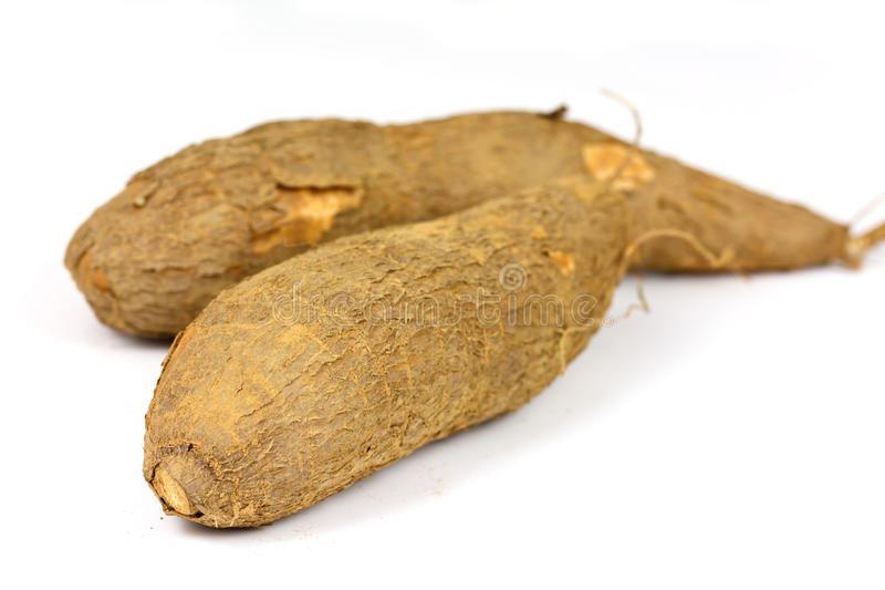 Un manioc coupé sur un fond blanc photographie stock