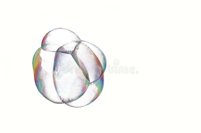 Un manojo de burbujas de jabón aisladas en un fondo blanco Un manojo de células de aire Zygote de las células transparentes Embri fotos de archivo libres de regalías
