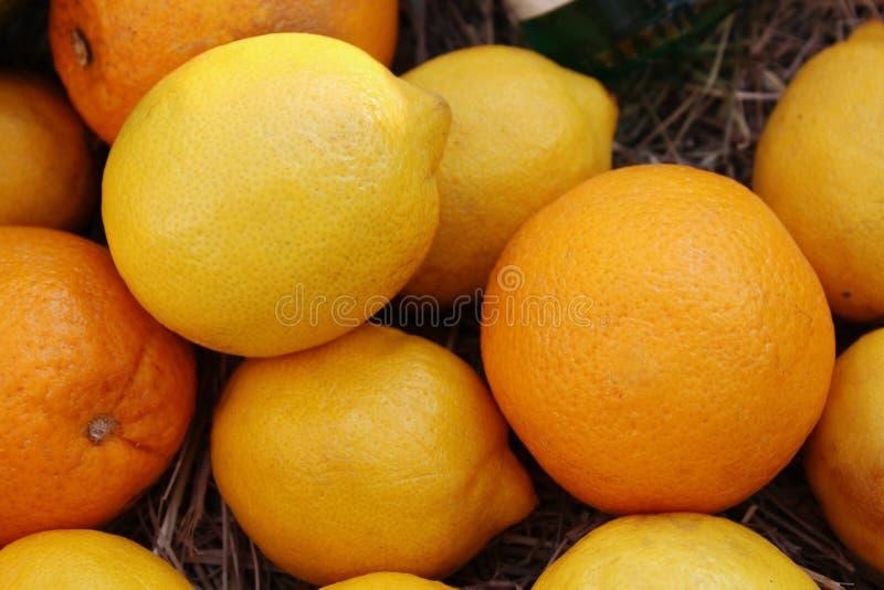Un manojo de naranjas y de limones, natural brillante, hermoso fotos de archivo