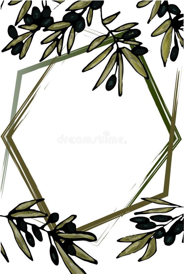 Un marco de varias líneas en el fondo de ramas del olivo Espacio para el texto Ilustración a mano del vector stock de ilustración