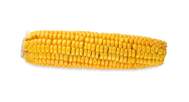 Un mazorca de maíz o maíz amarilla aislado en el fondo blanco foto de archivo