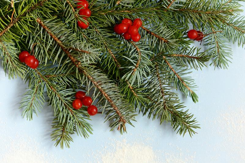 Un mazzo decorativo dei rami dell'albero di Natale raccolti in un guanto con i mirtilli rossi su un fondo blu fotografie stock
