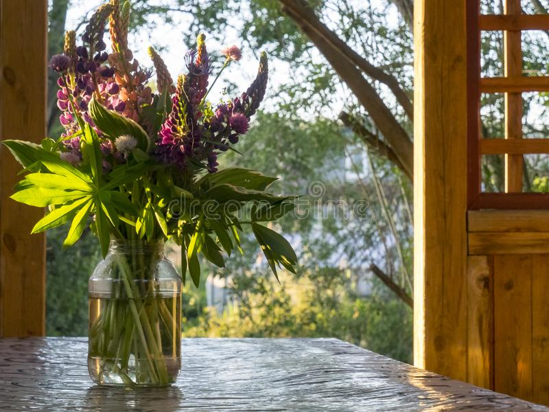 Un mazzo dei lupini in un barattolo sulla tavola, sul portico immagine stock libera da diritti