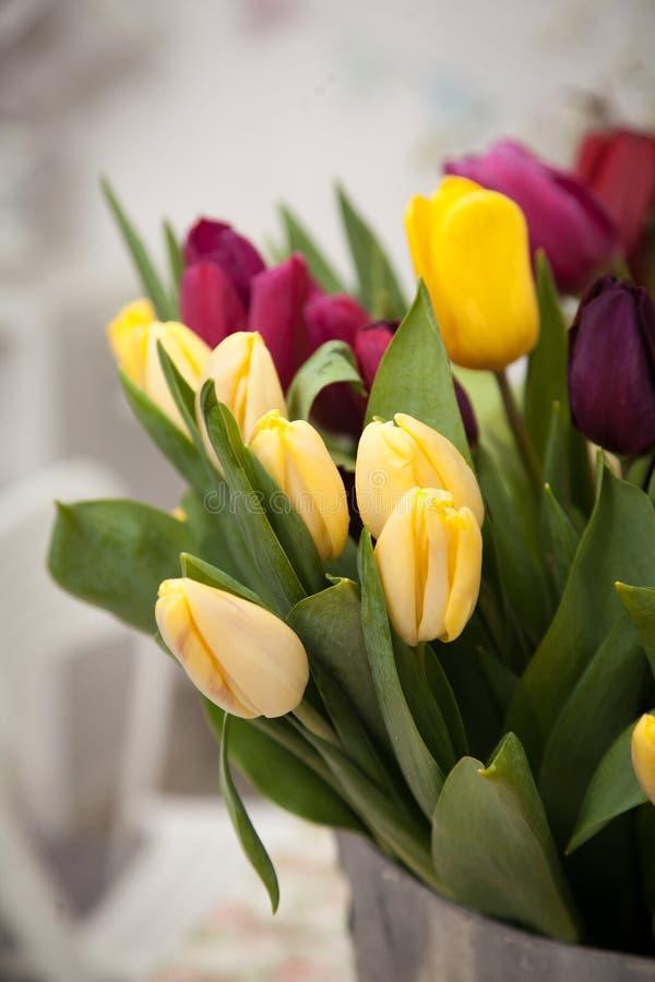 Un mazzo del tulipano fiorisce in un secchio del metallo fotografia stock