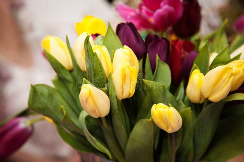 Un mazzo del tulipano fiorisce in un secchio del metallo fotografia stock libera da diritti