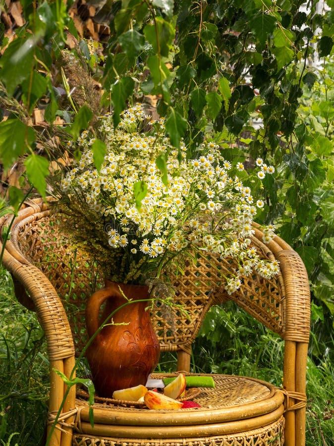 Un mazzo delle camomille in un vaso dell'argilla sotto una pioggia di estate fotografia stock