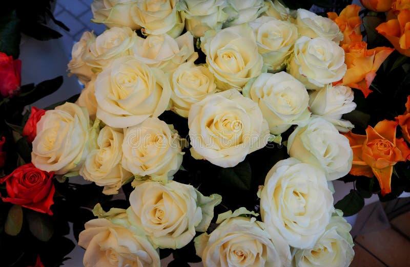 Un mazzo delle rose bianche immagini stock libere da diritti
