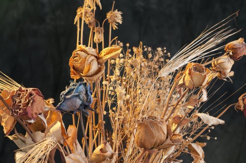 Un mazzo delle rose e dei fiori appassiti fotografie stock libere da diritti