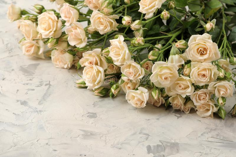 Un mazzo di belle mini rose tenere su un fondo del cemento leggero Spazio per testo immagini stock