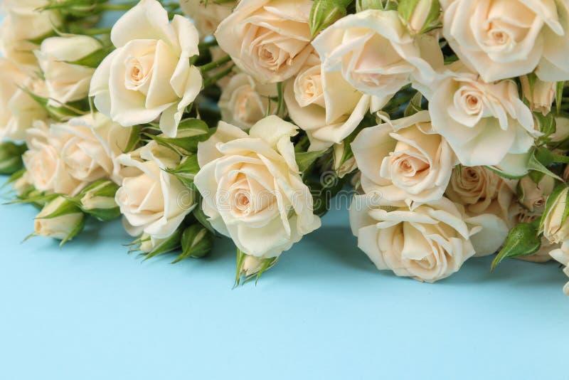 Un mazzo di bello mini primo piano tenero delle rose su un fondo blu luminoso feste presenti immagini stock
