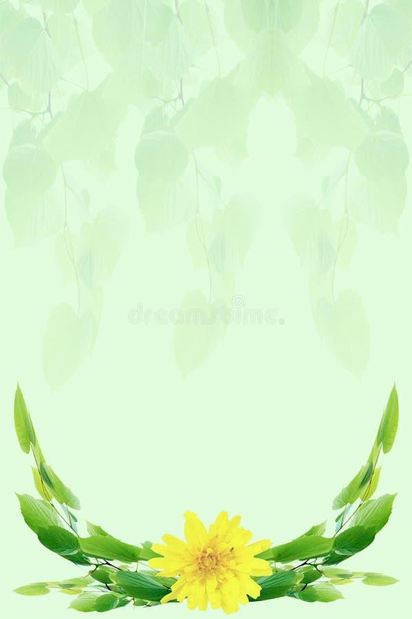Un mazzo di fogli fotografia stock immagine di verde for Costruire un mazzo di portico