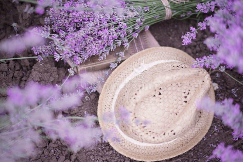 Un mazzo di lavanda, del libro e di un cappello di paglia sul suolo fotografia stock libera da diritti