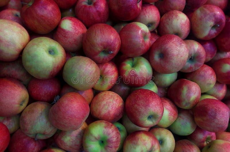 Un mazzo di mele rosse mele fresche sul primo piano dello scaffale del mercato immagine stock libera da diritti
