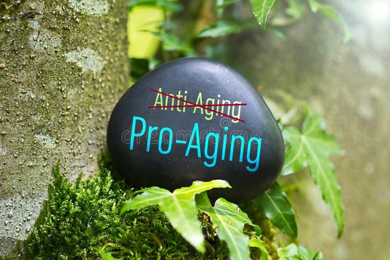 Un meilleur Pro-vieillissement qu'anti-vieillissement photographie stock