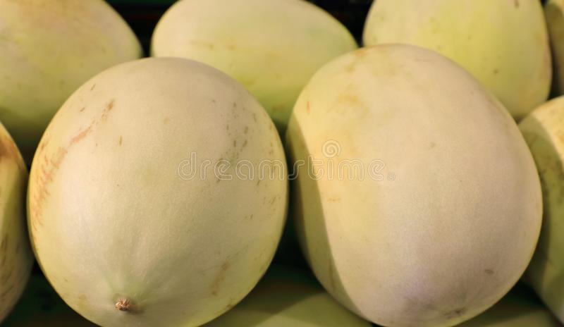 Un melón delicioso puede ser muy bonito fotografía de archivo libre de regalías