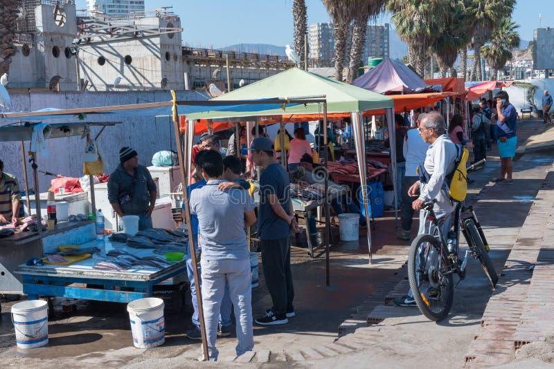 Un mercado de pescados al aire libre en Coquimbo, Chile foto de archivo