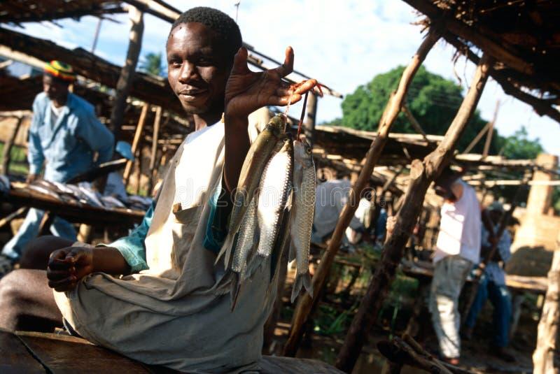 Un mercado de pescados en Malawi. imágenes de archivo libres de regalías