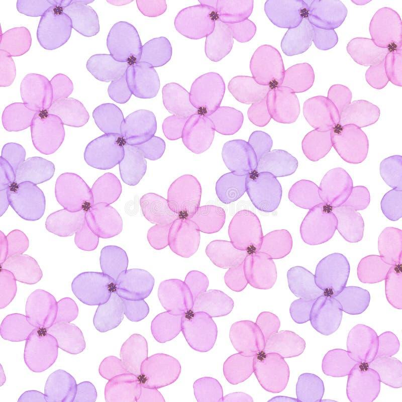 Un modello floreale senza cuciture con la molla porpora dell'acquerello e rosa tenera disegnata a mano fiorisce royalty illustrazione gratis