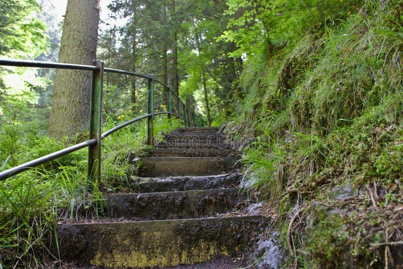 Un modo ripido delle scale nel ravennaschlucht fotografie stock libere da diritti