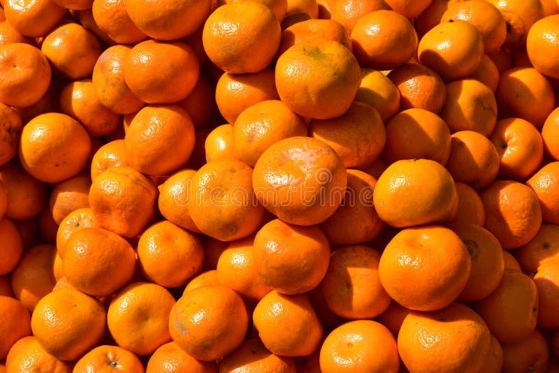 Un montón de naranjas imagen de archivo libre de regalías